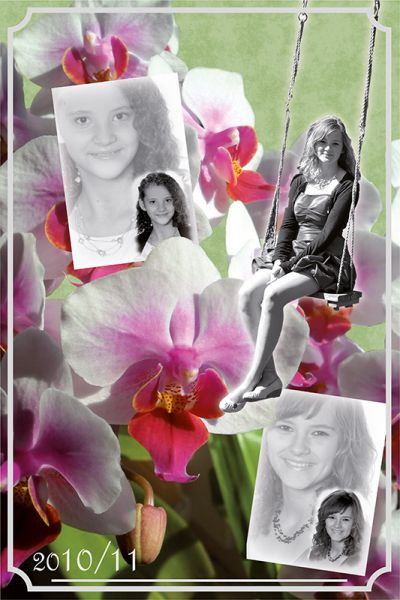 Fotocolage_Orchidee
